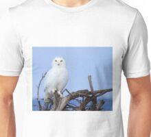 Posing for Playbird Unisex T-Shirt