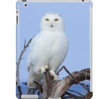 Posing for Playbird iPad Case/Skin