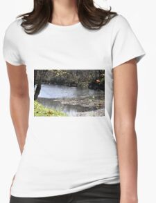 Scenic River Womens Fitted T-Shirt