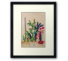 Cacti 3 Framed Print
