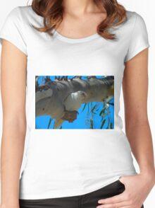 Little Corella Women's Fitted Scoop T-Shirt