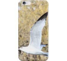 Freebird iPhone Case/Skin