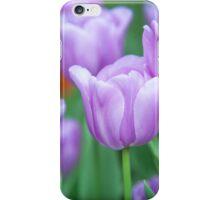 Field of Purple Tulips iPhone Case/Skin