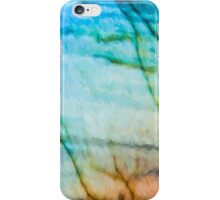Abstract Painting Vibrinces iPhone Case/Skin