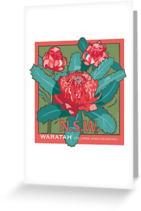 Waratah- NSW State flower by contourcreative