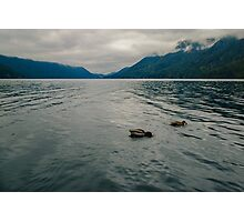 Lake Crescent, Olympic National Park, Washington Photographic Print