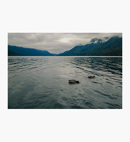 Lake Crescent, Olympic National Park, Washington Photographic Print
