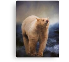 Spirit Bear - Kermode Bear Art Canvas Print
