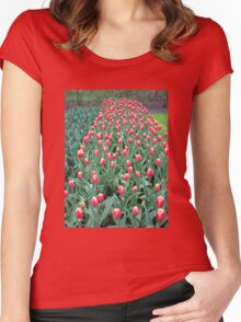 Two-Tone Tulips - Keukenhof Gardens Women's Fitted Scoop T-Shirt