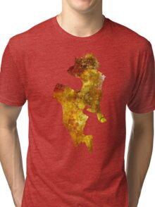 Terra Galaxy Tri-blend T-Shirt
