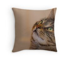 Jimmy Cat, Watchful. Throw Pillow