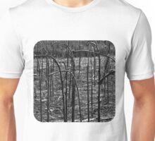 Sunflower Stalks  Unisex T-Shirt