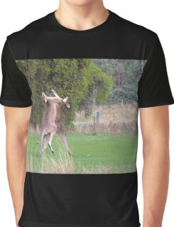 Kangaroos Graphic T-Shirt