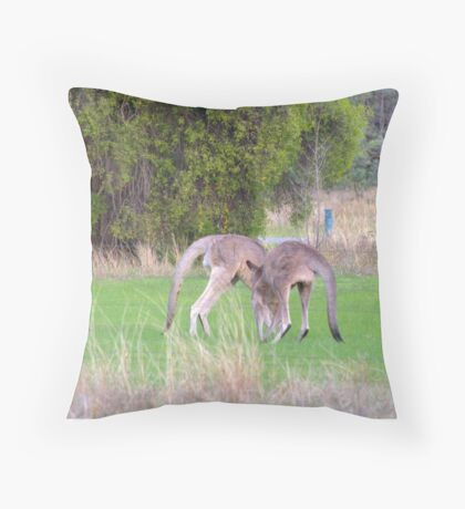 Kangaroos Throw Pillow