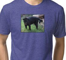 Bleh! Tri-blend T-Shirt