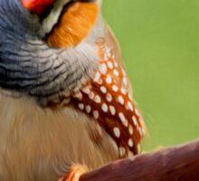 Bird Art - Change Your Opinions Sticker