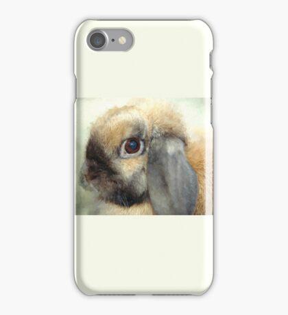 Lop eared dwarf rabbit iPhone Case/Skin