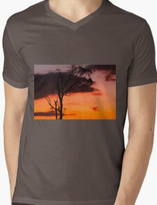 Tree silhouette in Queensland Mens V-Neck T-Shirt