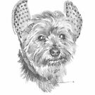 yorkie w/devil horns drawing by Mike Theuer