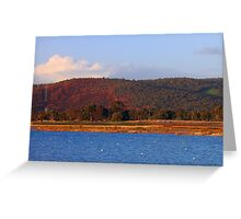 Champion Lakes Foothills - Western Australia  Greeting Card