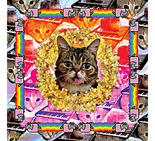 Cat Internet Royalty Photographic Print
