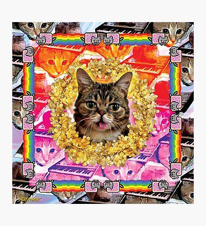 Cat Internet Royalty Photographic Print