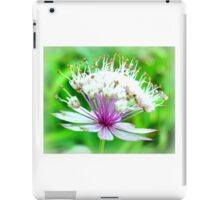 Astrantia Beauty iPad Case/Skin