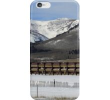Behind The Snow Fence iPhone Case/Skin