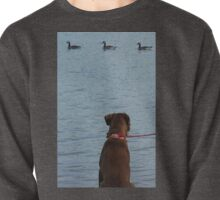 Three Ducks and A Dog Pullover