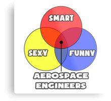 Venn Diagram - Aerospace Engineers Metal Print