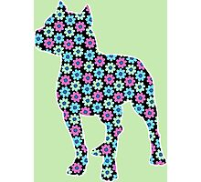 Pitbull Terrier, Spring Floral Pattern Photographic Print