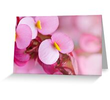 Cute little pink flowers Greeting Card