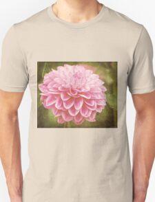 Beauty Awakens Vintage Art Unisex T-Shirt