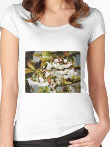 Flower Art - Apple Blossoms Women's Fitted Scoop T-Shirt