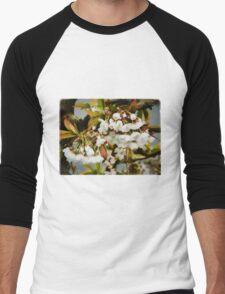 Flower Art - Apple Blossoms Men's Baseball ¾ T-Shirt