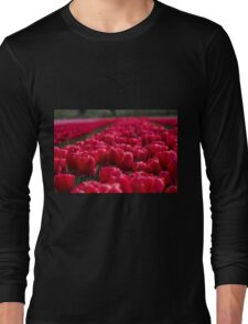 Sea Of Red Tulips Long Sleeve T-Shirt
