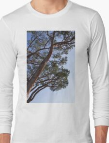 tree in spring Long Sleeve T-Shirt