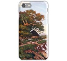 Salaš after the rain iPhone Case/Skin