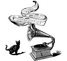 The Cat and the Song (black and white) Photographic Print