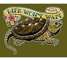 Life Won't Wait Snapping Turtle Photographic Print