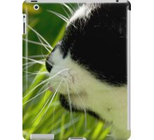 The Cats Whiskers iPad Case/Skin