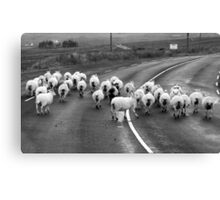 Donegal style Traffic Jam Canvas Print