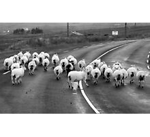 Donegal style Traffic Jam Photographic Print
