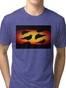 Sunset Quartet Tri-blend T-Shirt