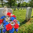 Remembering Soldiers by Owed To Nature