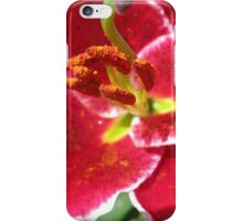 Flamboyant Lily Anthers - Macro Untouched iPhone Case/Skin