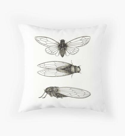 3 sepia Cicadas Throw Pillow