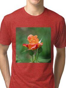 Colorful Rose Tri-blend T-Shirt
