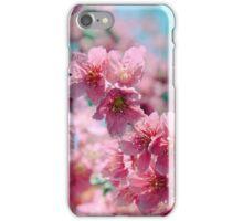 Plum Blossom 3 iPhone Case/Skin