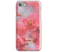 Plum Blossom 4 iPhone Case/Skin